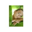 Gabinet Uroda + mgr kosmetologii Marta