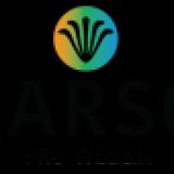 Larso - strony internetowe