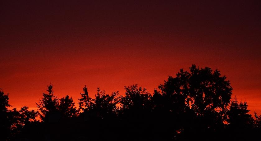 Felietony, pogoda sierpniu jeszcze pozytywnie zaskoczy - zdjęcie, fotografia