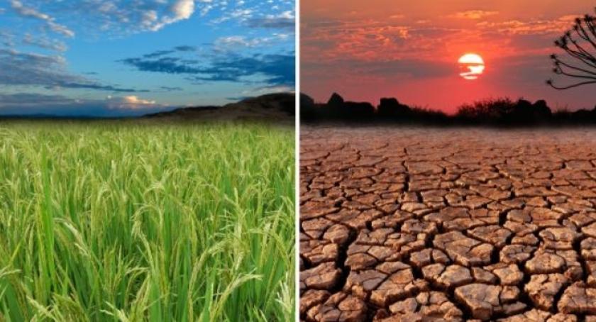 Konsultacje, Szukamy Pomysłu Klimat ruszają konsultacje dotyczące strategii adaptacji zmian klimatu - zdjęcie, fotografia