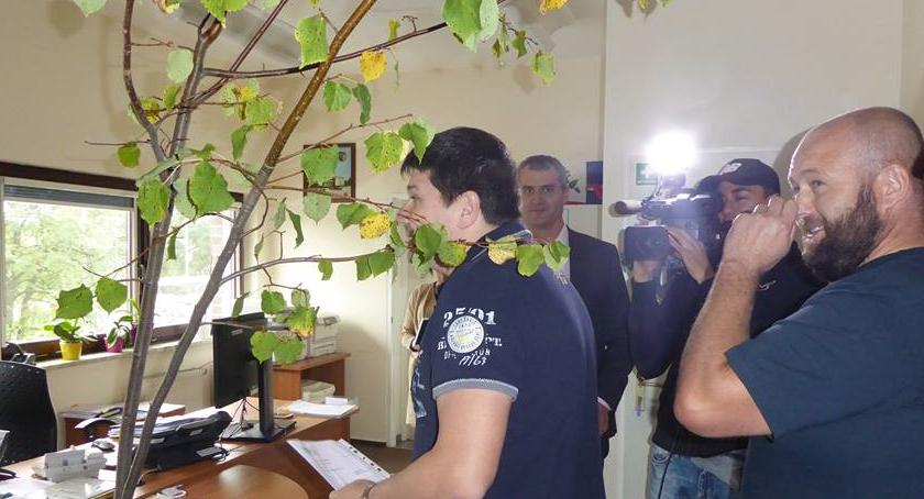 Zieleń, Wycięte drzew pójdzie topór Akcja Białołęce przeciwko masowej wycince - zdjęcie, fotografia