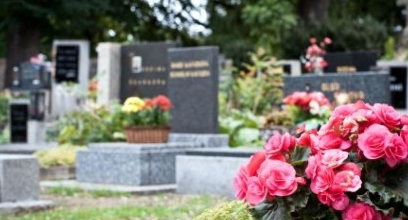 , Poszerzenie cmentarza Mehoffera lupą śledczych - zdjęcie, fotografia