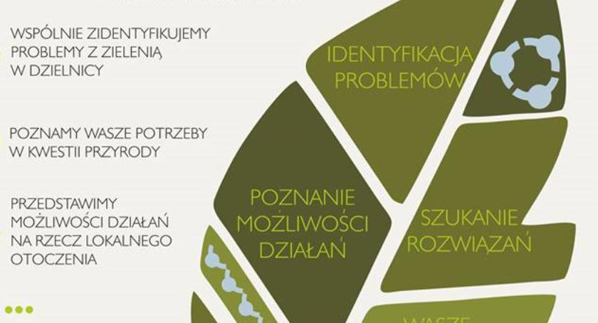 Zieleń, Projektujemy zieleń Białołęce przyjdźcie dzisiaj spotkanie! - zdjęcie, fotografia