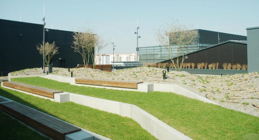 Zieleń, Ogród dachu Galerii Północnej - zdjęcie, fotografia