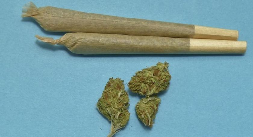 Narkotyki, Jechał wpływem narkotyków miał samochodzie - zdjęcie, fotografia