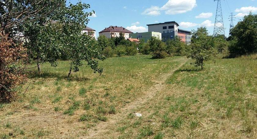 Inwestycje, modernizacją placu parkiem Portowej dobre wieści! - zdjęcie, fotografia