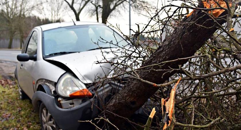 Wypadki, Zasłabł uderzył drzewo Wypadek Płochocińskiej [ZDJĘCIA] - zdjęcie, fotografia