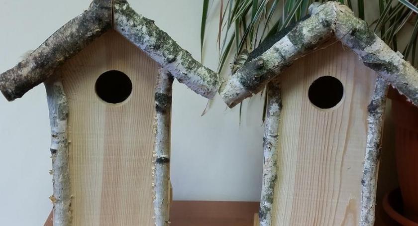 Zwierzęta, Ratusz rozdaje budki lęgowe - zdjęcie, fotografia