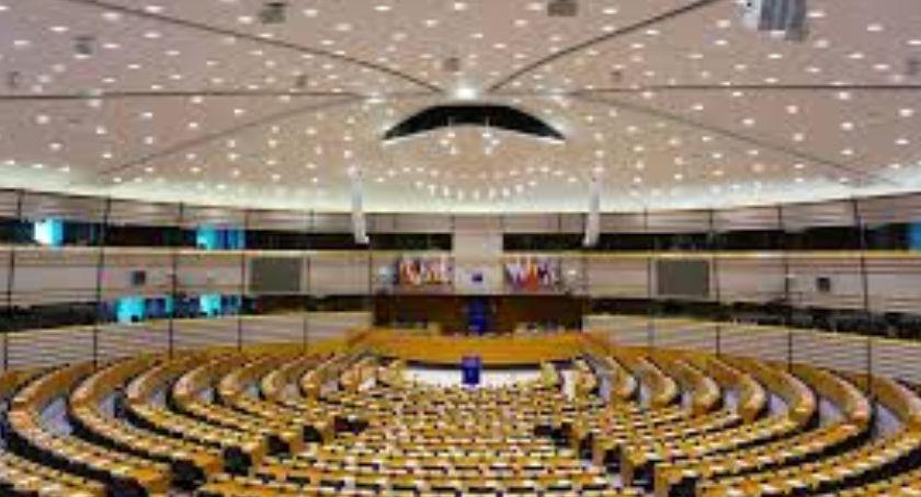 Samorząd, Wybory Parlamentu Europejskiego reprezentacja Białołęki - zdjęcie, fotografia