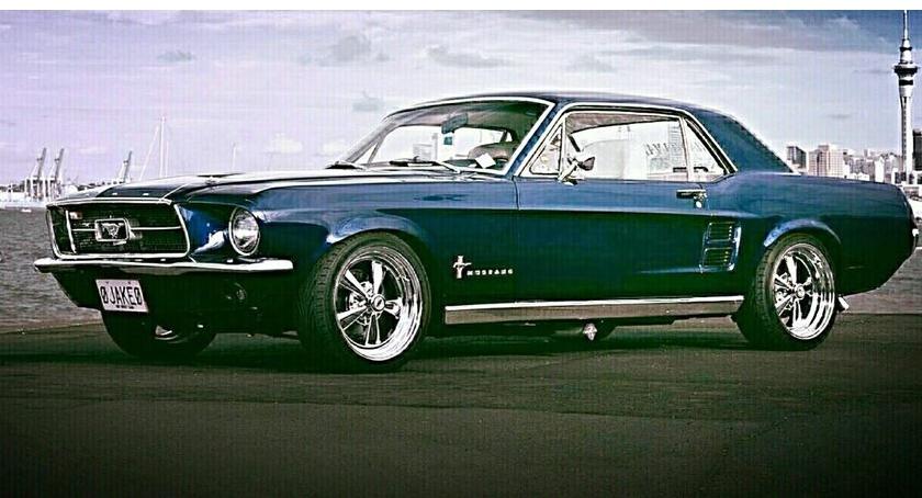 Wydarzenia, Mustangi Chacie Trapera - zdjęcie, fotografia