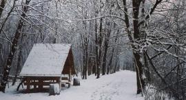 Spotkanie w sprawie MPZP dla Żerania - jest ścieżka do Nieporętu