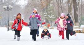 Zima w Mieście - jutro ruszają zapisy!