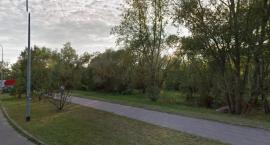 To może być klimatyczne miejsce - walczymy o Park przy Botewa