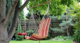 Jak wypoczywać w swoim ogrodzie?