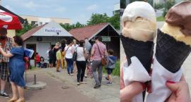 PasteLove - smakowite miejsce na gastronomicznej mapie dzielnicy