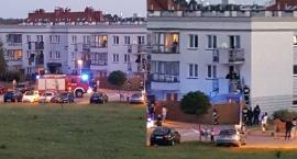 Wieczorna akcja na Lewandowie - policja i straż na odsiecz psu