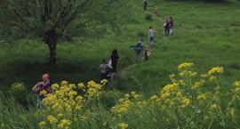Dzika przyroda, urokliwe zakątki - w czwartek Mikrowyprawa na Żerań. Tego nie można przegapić!