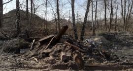 Dzikie wysypiska, spalanie odpadów i zlewnie oleju - to wszystko w Porcie Żerańskim...