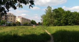 Trwa walka o Ogrody Mehoffera. Czy park na Nowodworach ma szanse powstania i przetrwania?...