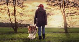 Z psem na spacer bez smyczy? Już od nowego roku