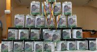 Udana zbiórka pieniężna na Cmentarzu Tarchomińskim