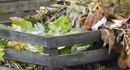 Ogólnodostępne kompostowniki - czy na Białołęce są potrzebne?