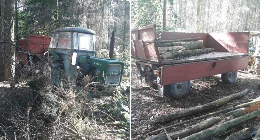 Kronika kryminalna, Złodzieje drewna zatrzymani - zdjęcie, fotografia