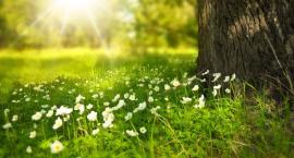 Jaka czeka nas wiosna?