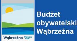 Wyniki Budżetu Obywatelskiego 2020