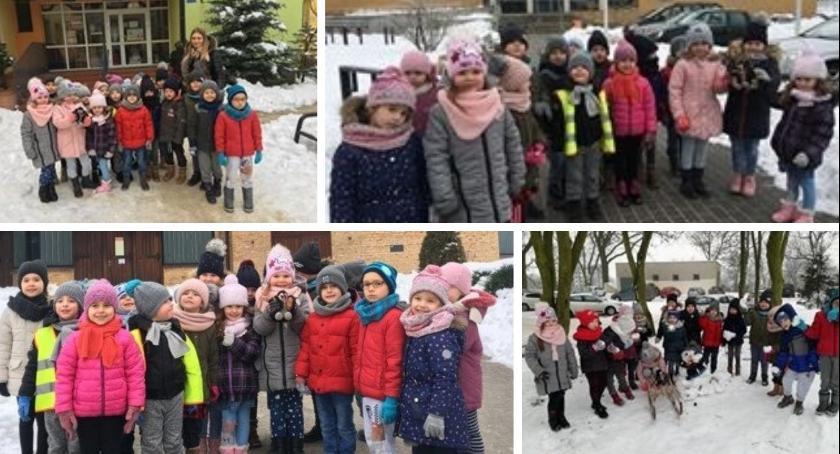 Oświata, przedszkolacy! - zdjęcie, fotografia