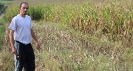 Rolnicy ruszyli na pola
