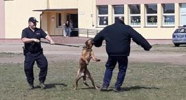 Odwiedził ich... pies