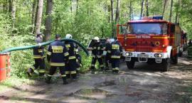 Setka strażaków gasiła pożar lasu