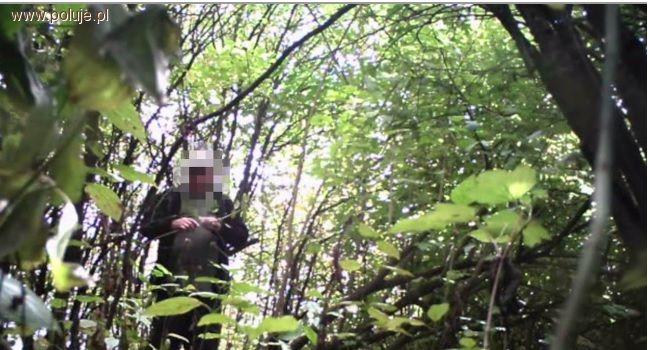 Kłusownictwo, Kamera lesie przyłapała kłusownika gorącym uczynku - zdjęcie, fotografia