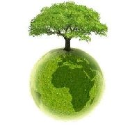 Ci, co nazywają się ekologami