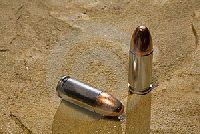 Amunicja śrutowa czy kulkowa? - zagłosuj