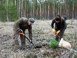 Wszyscy mogą wziąć udział w sadzeniu lasu