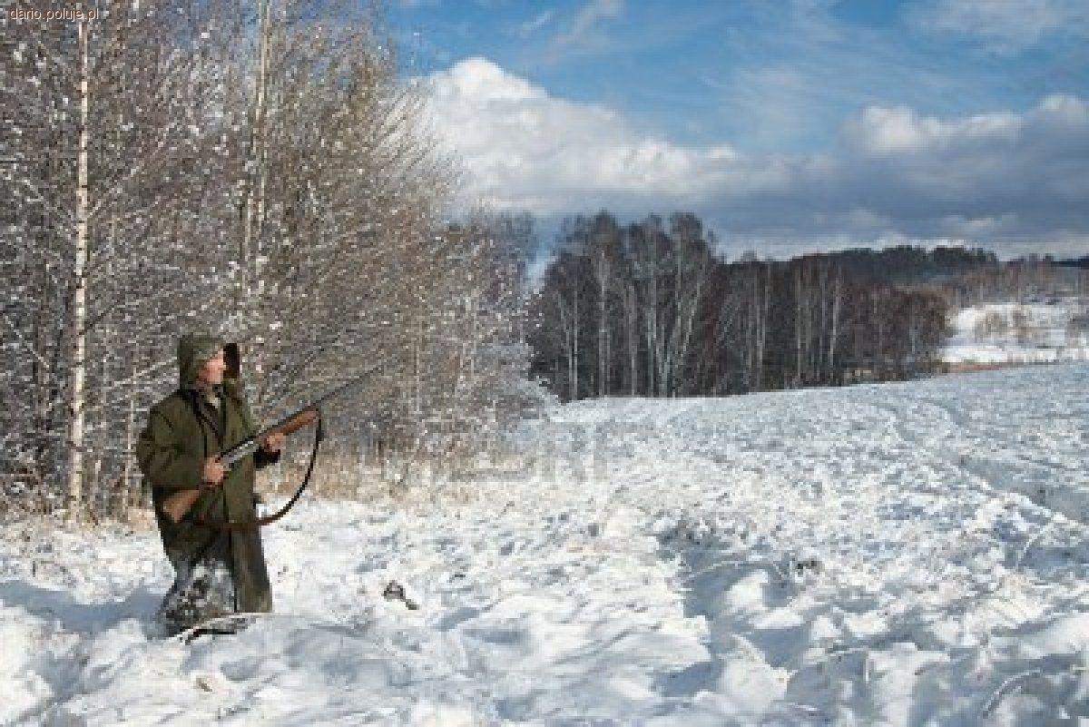 Tradycja łowiecka, Polowanie wigilijne Tradycja Polowania Wigilijnego - zdjęcie, fotografia