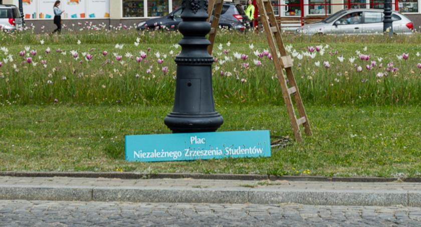 Wiadomości, Zagospodarowanie Placu konsultacji - zdjęcie, fotografia