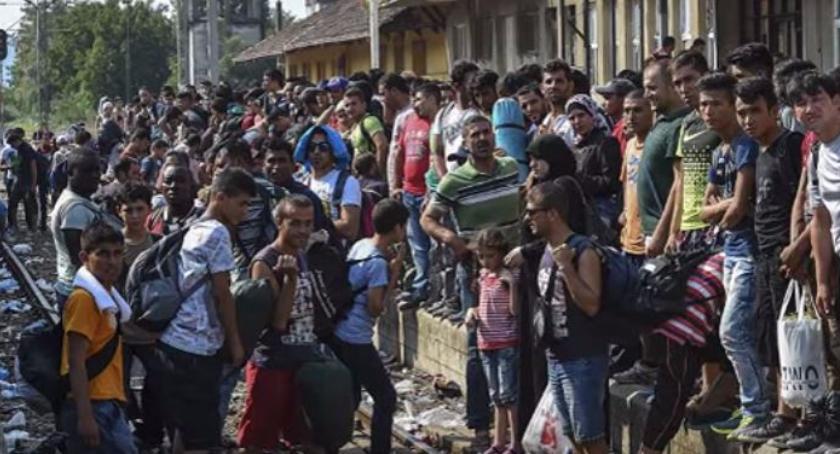 Wiadomości, Polska będzie przyjmowała żadnych uchodźców Afryki - zdjęcie, fotografia