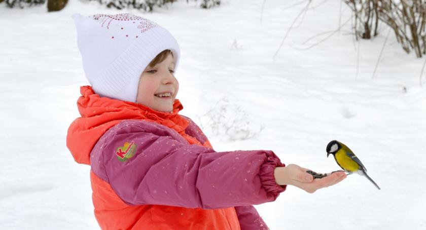Styl Życia, zadbać zwierzęta zimą - zdjęcie, fotografia