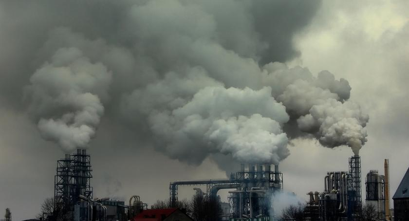Styl Życia, Mieszkańcy powinni włączać walkę smogiem - zdjęcie, fotografia