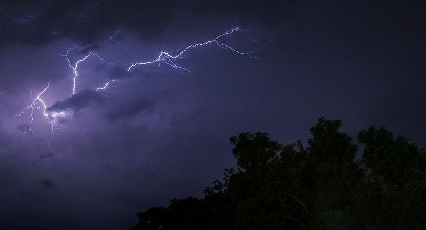 Styl Życia, lesie zaskoczy burza najlepiej schronić krzakach - zdjęcie, fotografia