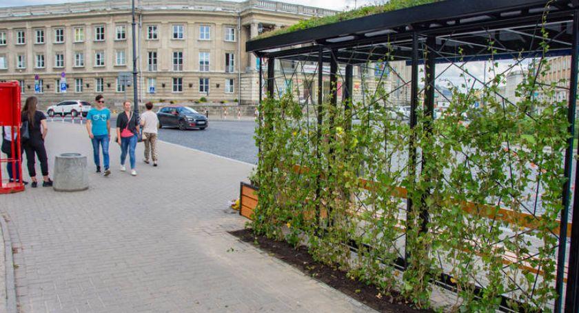 Wiadomości, Pierwsze zielone przystanki gotowe - zdjęcie, fotografia