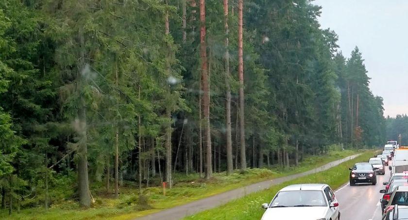 Wiadomości, Niedaleko Białegostoku powstanie Szlak Bioróżnorodności - zdjęcie, fotografia