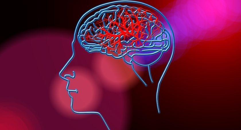 Styl Życia, Trzeba więc zwracamy uwagę problem udaru mózgu - zdjęcie, fotografia