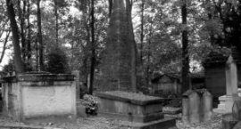 Kwesta na nekropolię udana