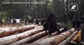 I gdzie jest ta przemoc tej Straży Leśnej