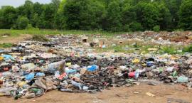 Urzędnicy nie monitorują nielegalnych wysypisk śmieci