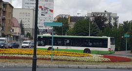 Autobus za darmo? To metoda na korki, smog i zatłoczone parkingi. Ale nie w Białymstoku